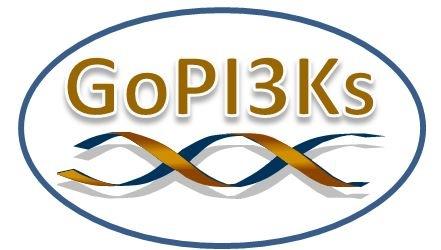 GoPI3Ks